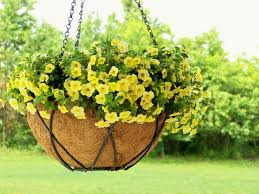 How To Make A Moss Wall by Diy How To Make A Moss Lined Hanging Basket Sheilahight Decorations