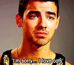 Funny Birthday Memes Tumblr - carlos pena joe jonas birthday august 15 2013 boy band poll