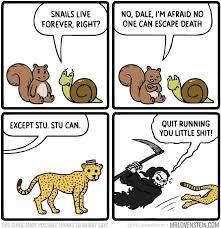 Meme Cartoon - meme comic dump album on imgur
