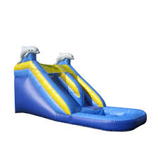 dolphin bouncer water slide bounce house castle castle house