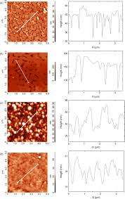 Epitaxial Copper Oxide Thin Films Deposited On Cubic Oxide
