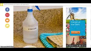 How To Clean And Oil by How To Clean Stainless Steel Appliances With Vinegar And Oil 2017