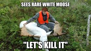 Hunter Meme - scumbag moose hunter meme guy