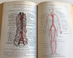 Human Physiology And Anatomy Book Vintage Greys Anatomy Etsy