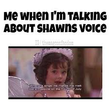 Shawn Meme - we can t even imagine what life would be like if shawn mendes