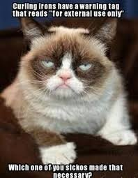 Grumpy Cat Meme Love - will heartless republicans screw themselves by screwing the