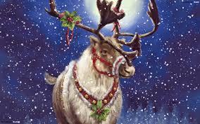 christmas deer christmas deer hd wallpaper