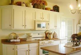Painted Kitchen Cabinets Ideas Colors Astounding Best Color To Paint Kitchen Cabinets Photo Design Ideas