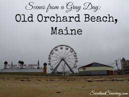 scenes from a gray day old orchard beach maine sweet and