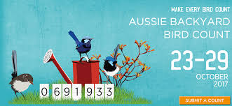 take part in the aussie backyard bird count to help identify birds