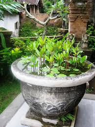 403 best water pots images on pinterest garden fountains garden
