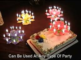 amazing birthday candle lotus flower musical birthday candles