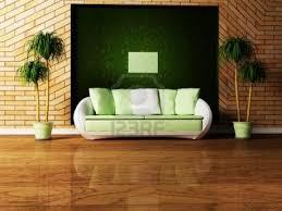 big living room plants 5 decoration idea enhancedhomes org