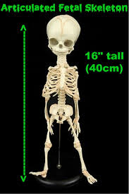 gothic skeleton garland swag haunted house prop decoration black