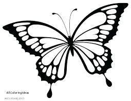 coloring page butterfly monarch monarch line drawing sketch of a monarch butterfly monarch butterfly