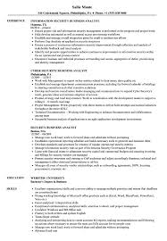 business analyst resume exles security business analyst resume sles velvet