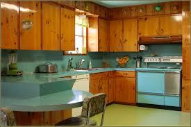 Knotty Kitchen Cabinets Vintage Knotty Pine Kitchen Cabinets Home Design Ideas
