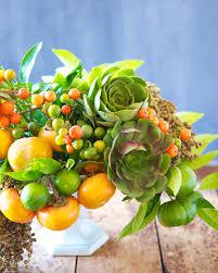 autumn fruit centerpiece tulipina