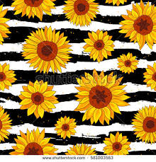sunflower wrapping paper seamless vector pattern sunflowers on striped stock vector