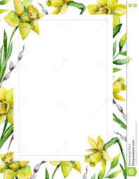 daffodils and green grass and willow on white flower