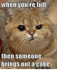 Overeating Meme - 25 best memes about cake cake memes