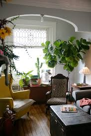 in philadelphia a victorian home with an urban farm u2013 design sponge