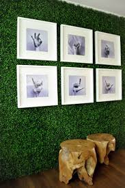 Living Room Grass Rug 66 Best Fun With Turf Images On Pinterest Garden Ideas