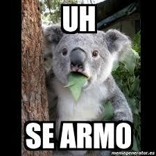 Uh Meme - meme koala uh se armo 4373964