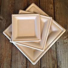bamboo disposable plates benefits bamboo disposable plates home design ideas the best