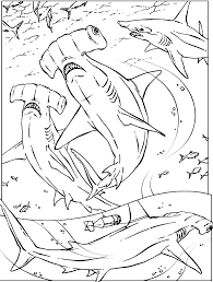 Happy Shark Color Page Coloring Pages Sharks Printable