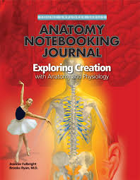 anatomy and physiology coloring workbook chapter 1 key anatomy