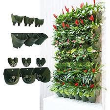 succulent wall planter amazon com
