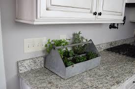 farm to fête easy countertop herb garden
