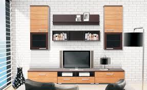 Living Room Furniture Tv Cabinet Astonishing Living Room Furniture Tv Units Gallery Ideas House