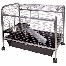 Cages For Guinea Pigs Ware Living Room Guinea Pig Home Petco