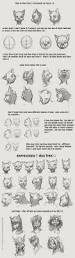 Anatomy Of A Cats Eye Best 25 Drawing Techniques Ideas On Pinterest Learn Drawing