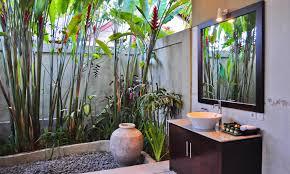 bathroom design marvelous plants for windowless bathroom small