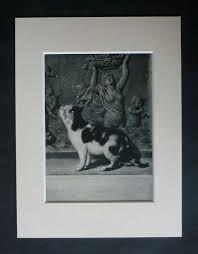 Prints For Home Decor 380 Best Antique Prints Vintage Prints For Home Decor Images On