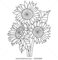 coloring amazing drawing sunflower print tattoo coloring