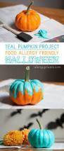 1000 images about halloween on pinterest pumpkins pumpkin