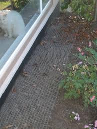 Keep Cats In Backyard Anti Cat Garden