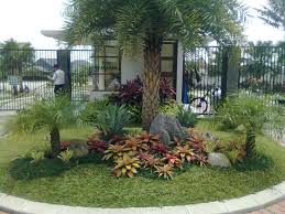 Tropical Landscaping Ideas by 9 Best Ideas For Tropical Dome Images On Pinterest Landscaping