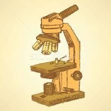 sketch microscope in vintage style vector illustration liliia