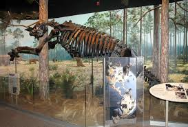 extinct monsters art history and science of museum