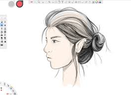 how to draw hair tutorial step by step instructions