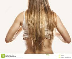 woman with long brown hair rear view stock photo image 70213857