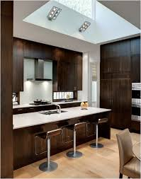 Modern Oak Kitchen Cabinets Kitchen Wood Cabinets Home Design Ideas And Pictures