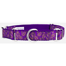 paisley ribbon buy purple paisley ribbon martingale with premium buckle online