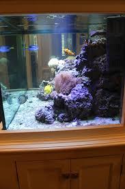 Home Aquarium by The Gracious Posse Tag Saltwater Aquarium