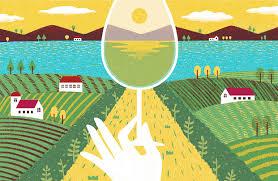 albariño a taste of coastal spain in a wine glass wsj